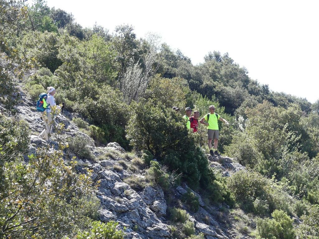 St Pons-Le col de Bertagne-Jeudi 26 avril 2018 YIUcDv