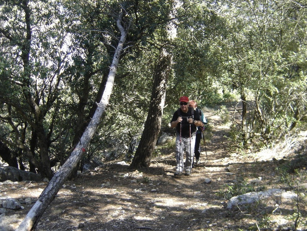 Kirbon - Crêtes du Regagnas - Jeudi 5 avril 2018 8SRXIm