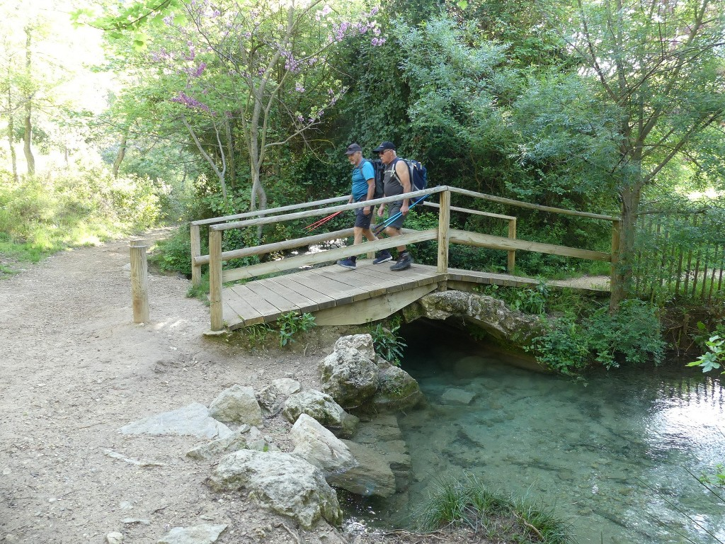 St Pons-Le col de Bertagne-Jeudi 26 avril 2018 9X48wK