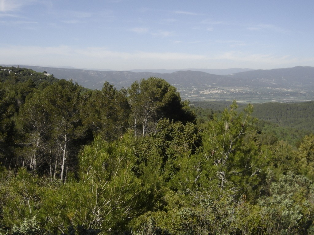 La Roque d'Anthéron - jeudi 26 avril 2018 KtuUgJ