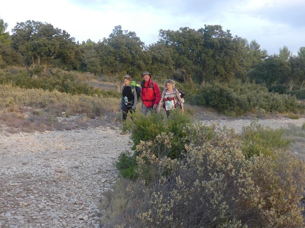 Lubéron-Vallon de l'Arc-Arche du Portalas-Jeudi 9 novembre 2017 NRcNwL
