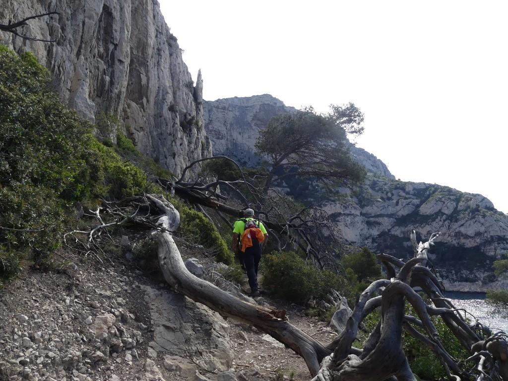 Mont Puget par l'Œil de Verre-Jeudi 3 mai 2018 RtJOdh