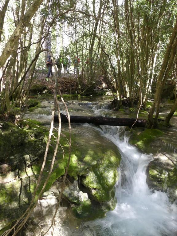 Verdon-Ourbes-Plein Voir-Jeudi 5 avril 2018 NRinVE