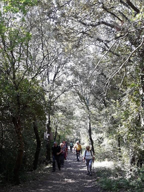 Mérindol- Gorges de Régalon - Samedi 5 mai 2018 PF2OvM