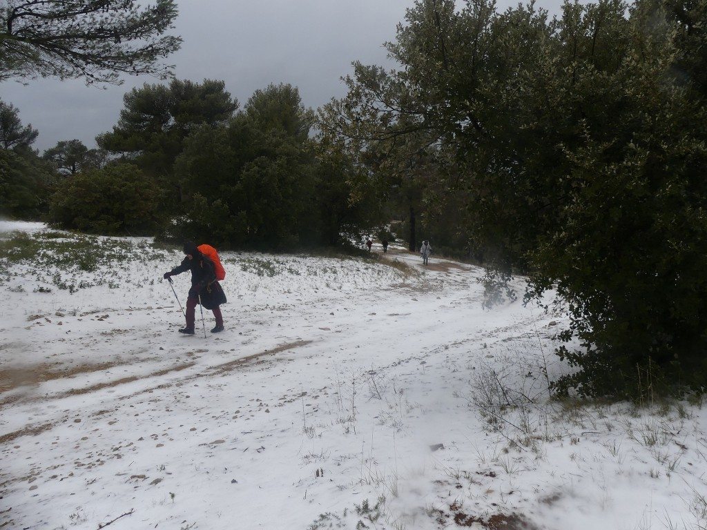 Meyrargues-Ligourès-Jeudi 1er mars 2018 QOd29w