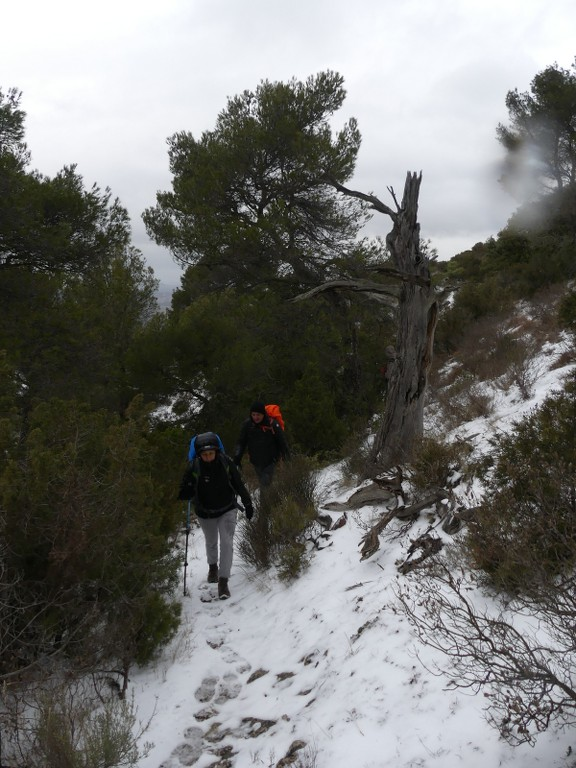 Meyrargues-Ligourès-Jeudi 1er mars 2018 TTZT5e