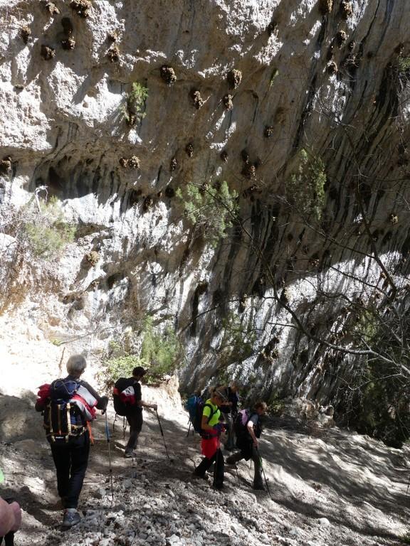 Verdon-Ourbes-Plein Voir-Jeudi 5 avril 2018 Unyq7E