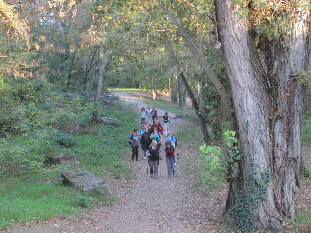 Aix en Provence - Jeudi 25 octobre 2018 5Ggvhb