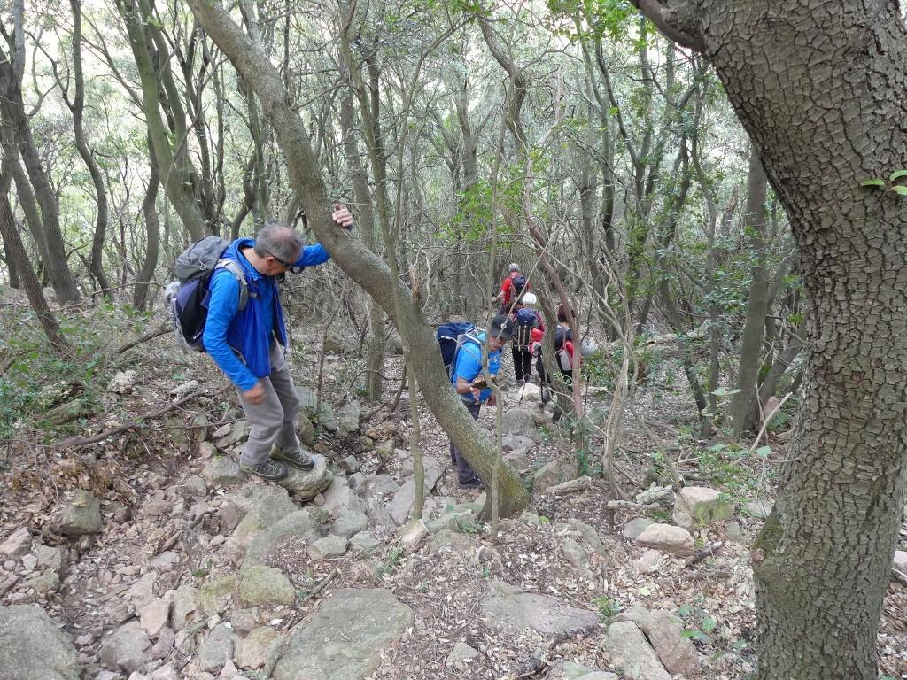 Traversée du Rocher de Roquebrune-Jeudi 29 mars 2018 8txXk2