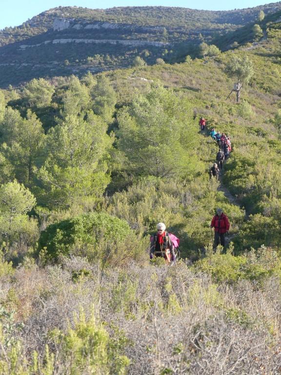 Garlaban-Pichauris-Plateau de l'Aroumi-Jeudi 30 novembe 2017 ANInlw