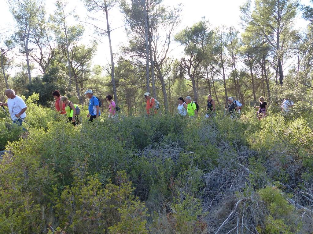 Circuit de Calas-Jeudi 15 septembre 2016 LQcNlf