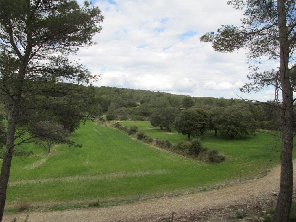 Martigues - Parc de Figuerolles - Jeudi 29 mars 2018 P7MyOf