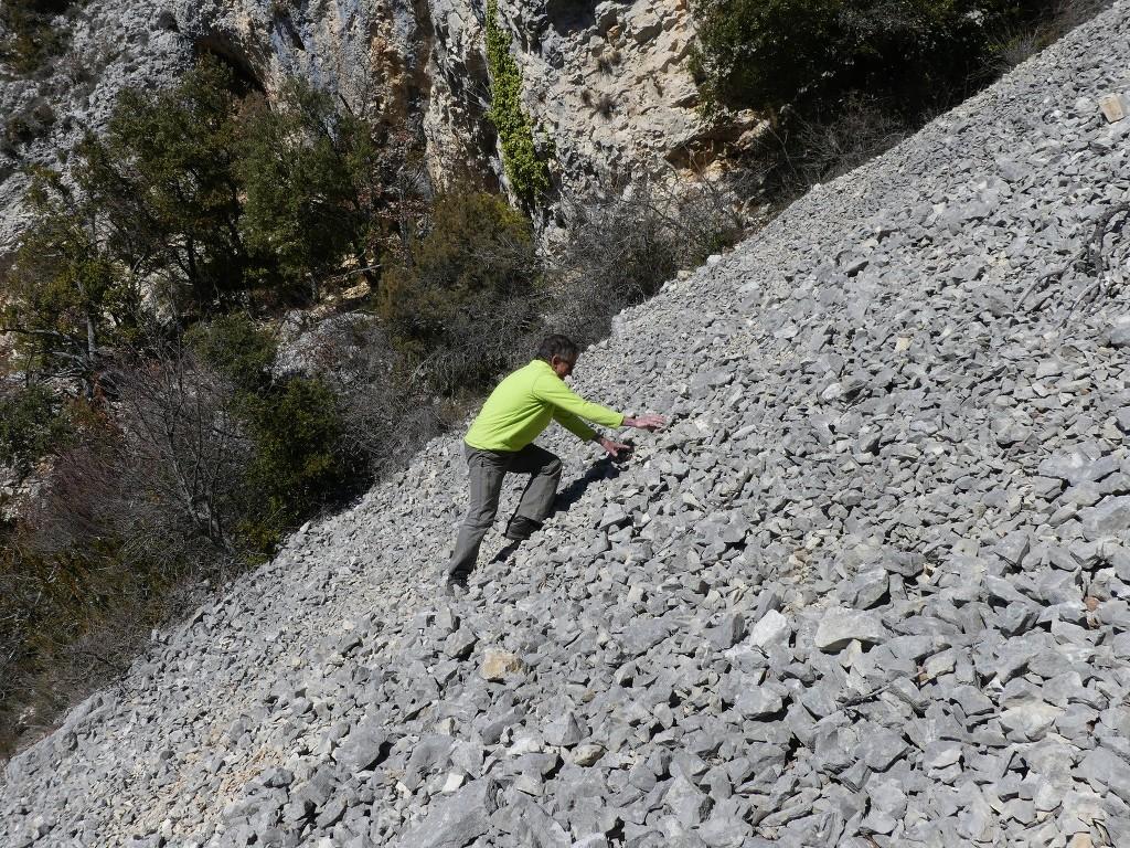 Buoux-Crêtes du Lubéron-Jeudi 22 mars 2018 UZ9TlD