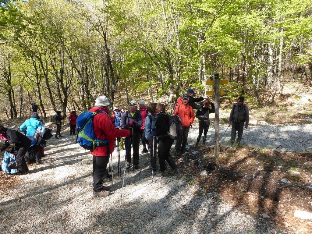 "Marche avec  ""Randonner en Haute Provence""-Dimanche 24 avril 2016 JELAAO"