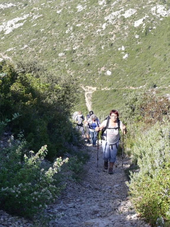 St Pons-Le col de Bertagne-Jeudi 26 avril 2018 Mqmv3j