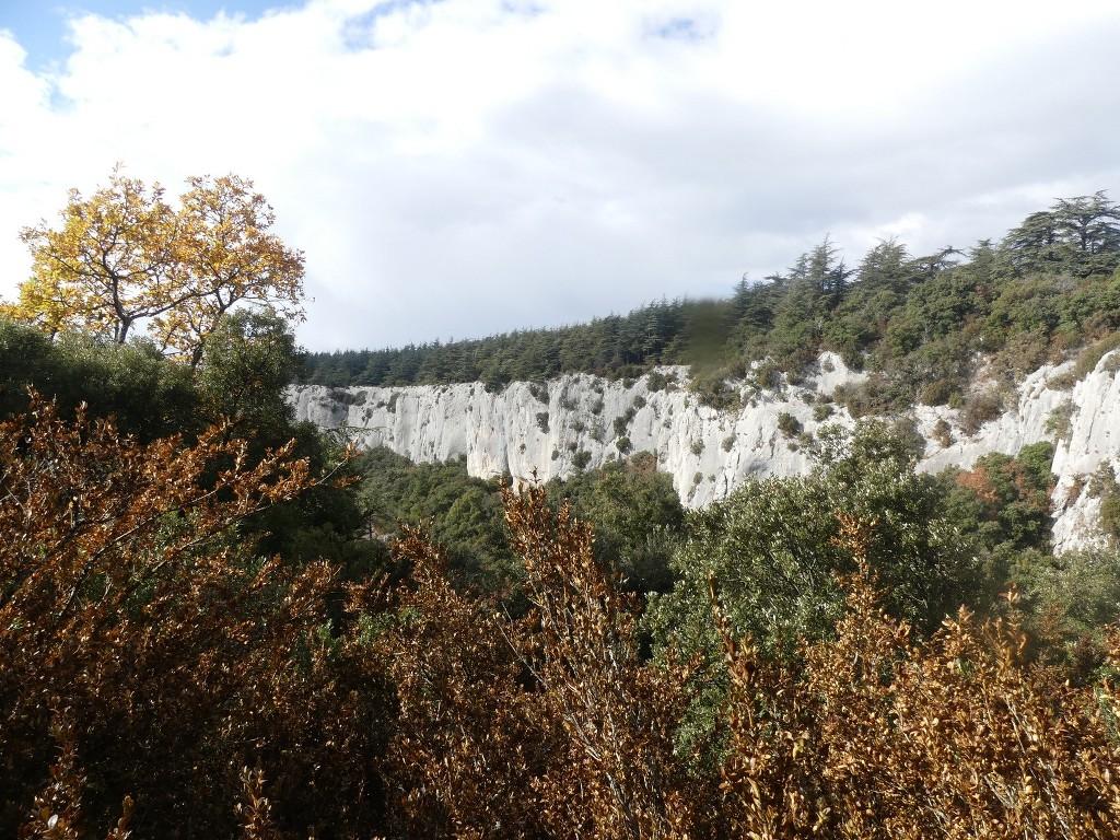 Lubéron-Vallon de l'Arc-Arche du Portalas-Jeudi 9 novembre 2017 MuzbX5