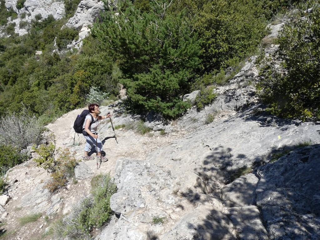 St Pons-Le col de Bertagne-Jeudi 26 avril 2018 QctWd9