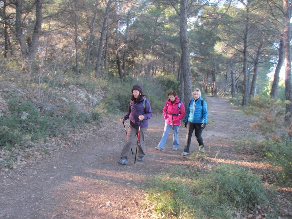 Eguilles - Les Bories - Jeudi 8 janvier 2015 BNRCGN