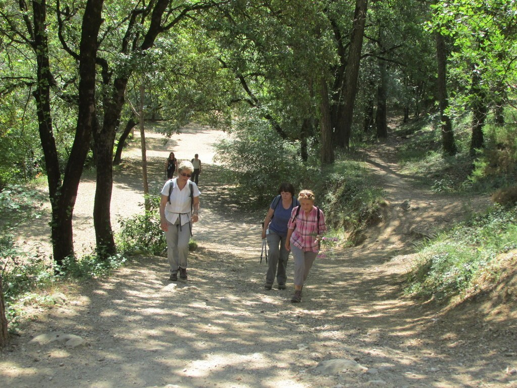 Auriol - les Encanaux - Jeudi matin 4 juin 2015 9C0Kmw