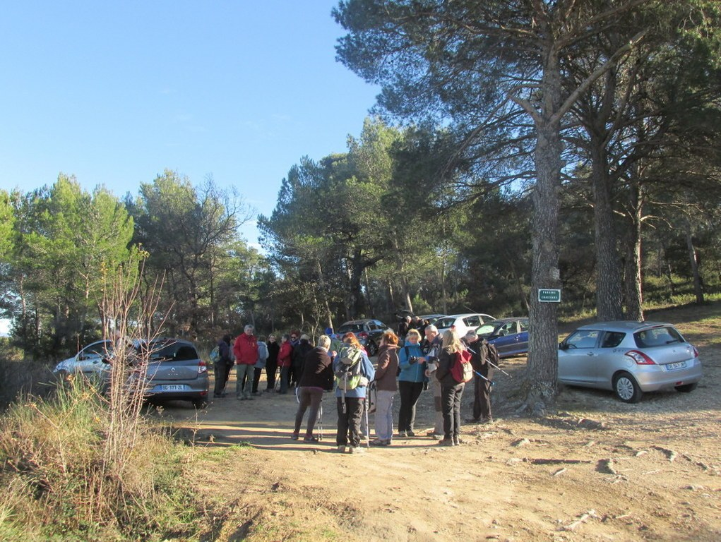 Eguilles - Les Bories - Jeudi 8 janvier 2015 A16KiB