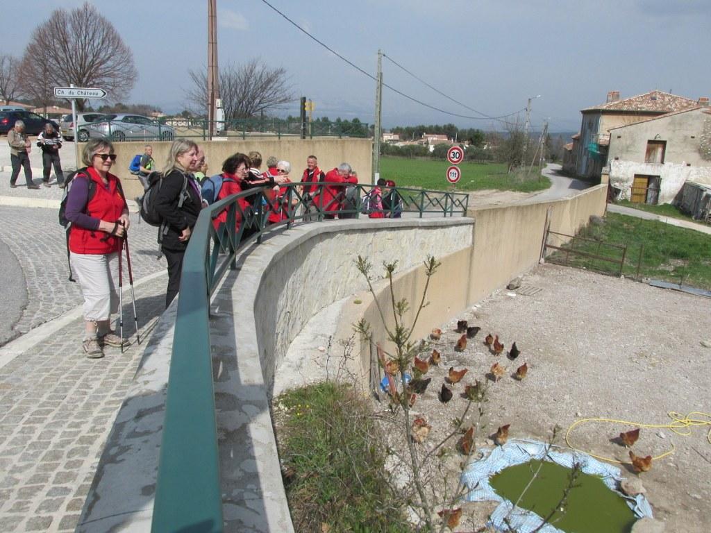 St Savournin -Gréasque -Jeudi 19 mars 2015 XmLRjE