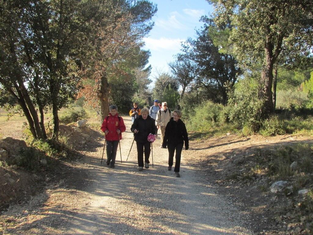 Eguilles - Les Bories - Jeudi 8 janvier 2015 IfoVRZ