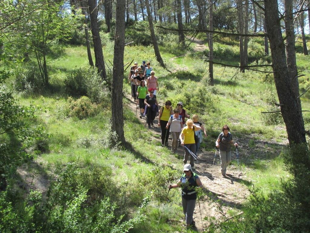 Cabriès - Calas - Jeudi 7 mai 2015 VR3kOo