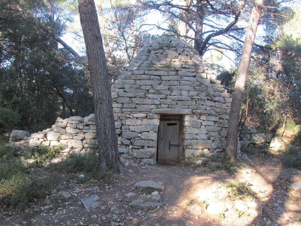 Eguilles - Les Bories - Jeudi 8 janvier 2015 Yw3S1w