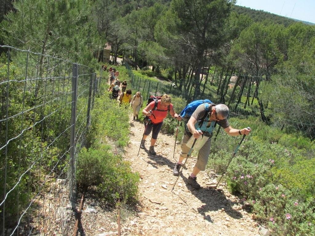 Cabriès - Calas - Jeudi 7 mai 2015 RLpsC2