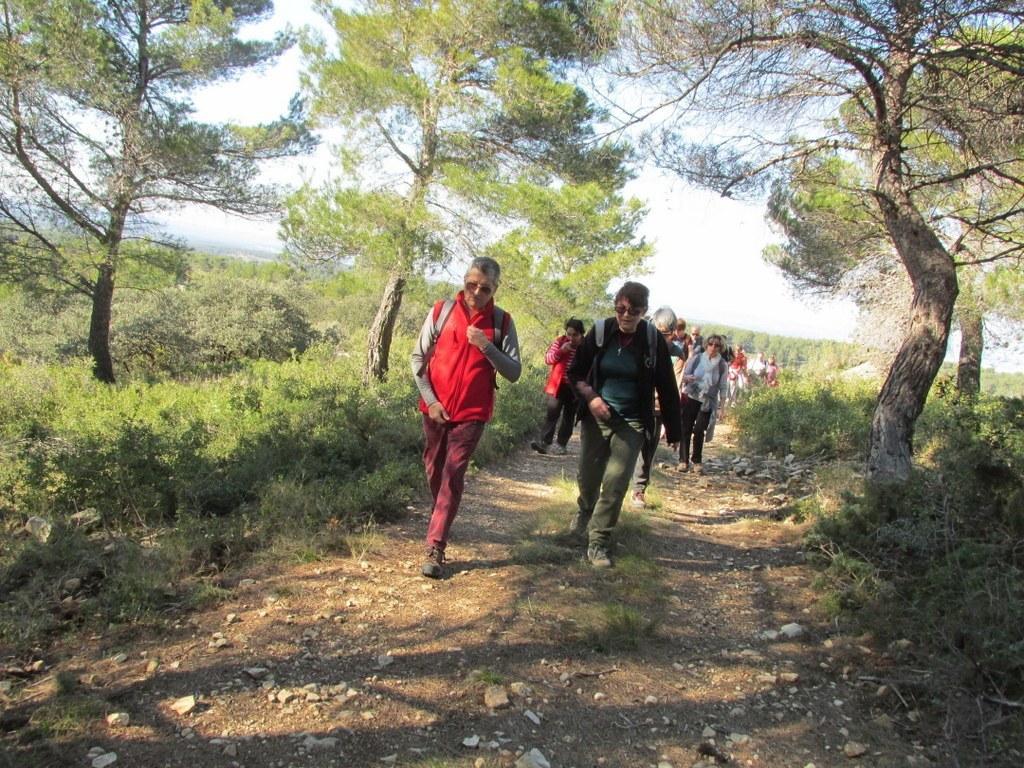 Les collines de Septêmes - La Vigie - jeudi 6 mars 2014 WIkI9B