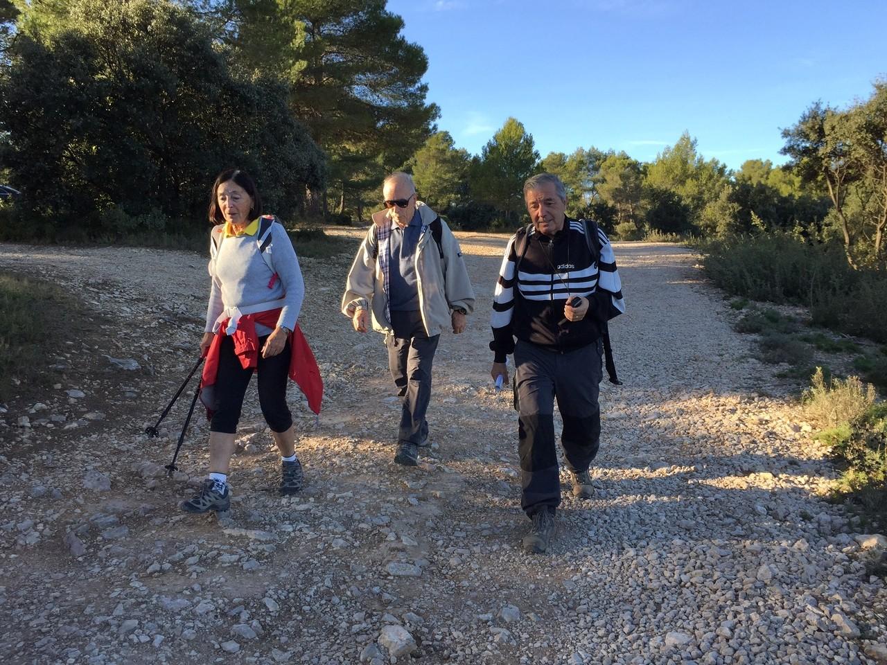 Cabriès - Jeudi 19 novembre 2015 L21MTW