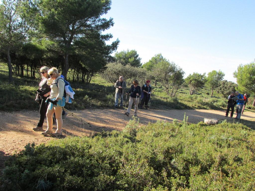 Septêmes - L'Etoile - Jeudi 13 novembre 2014 G7zASO