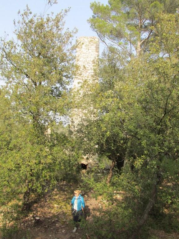 St Savournin -Gréasque -Jeudi 19 mars 2015 TBjY2r