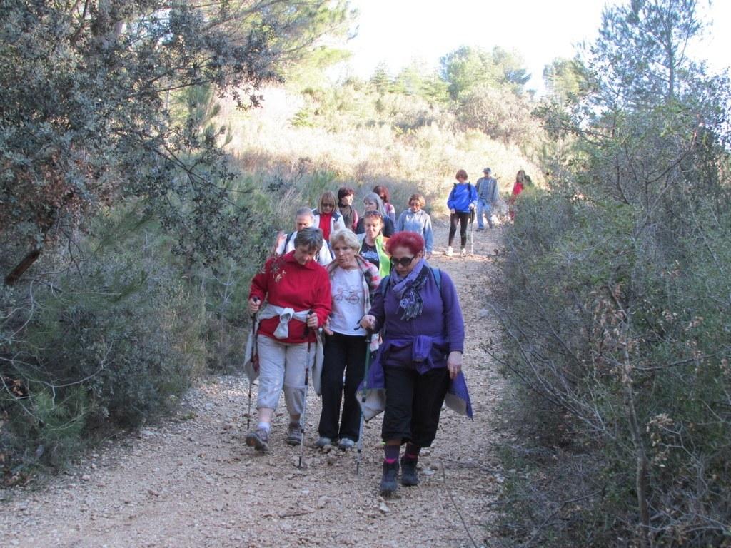 Les collines de Septêmes - La Vigie - jeudi 6 mars 2014 4Oreax