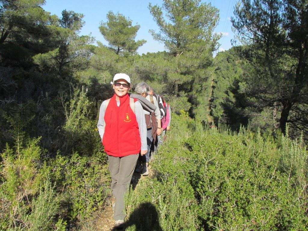 Les collines de Septêmes - La Vigie - jeudi 6 mars 2014 B8CWw1