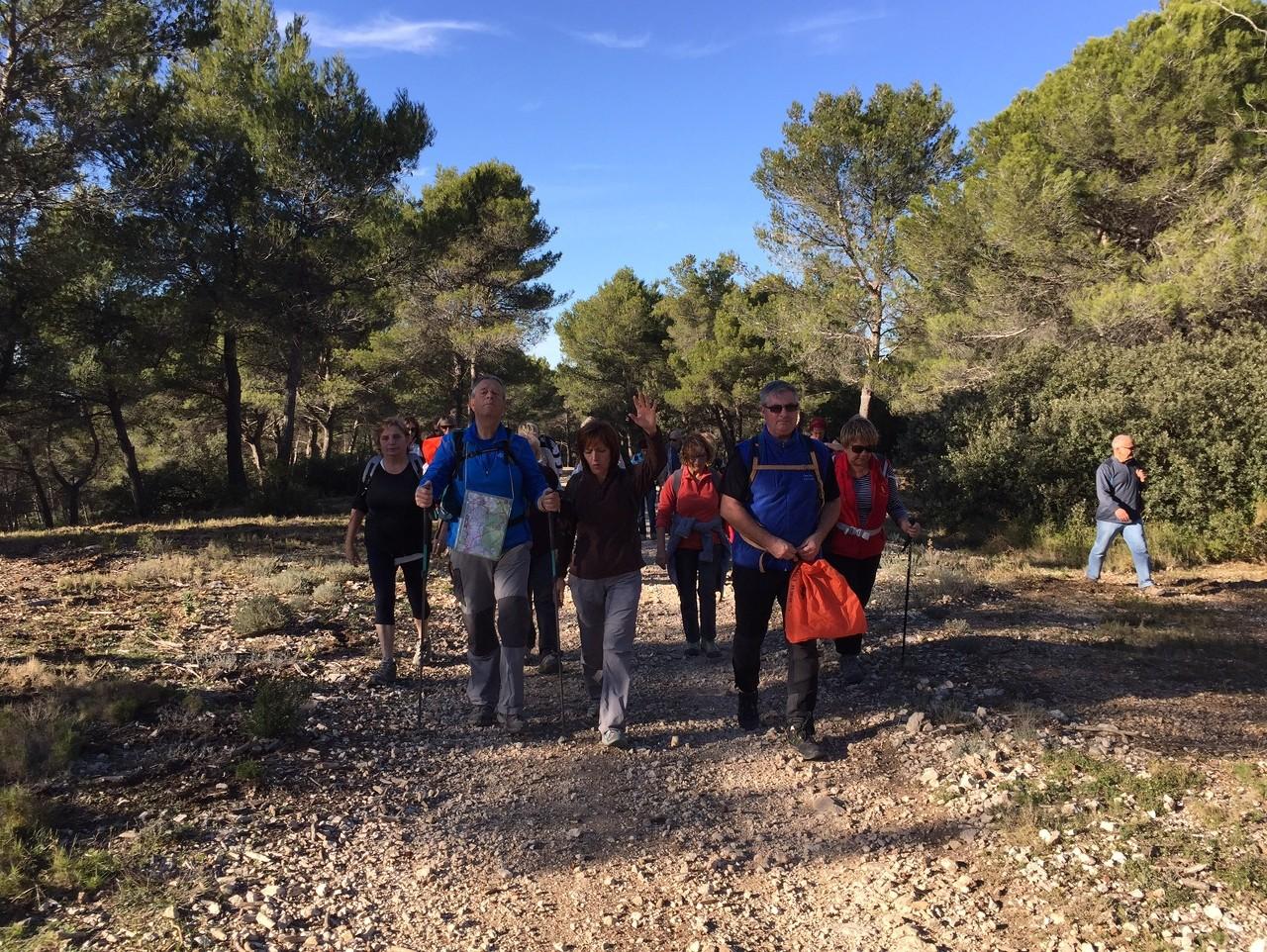 Cabriès - Jeudi 19 novembre 2015 BOQi1i