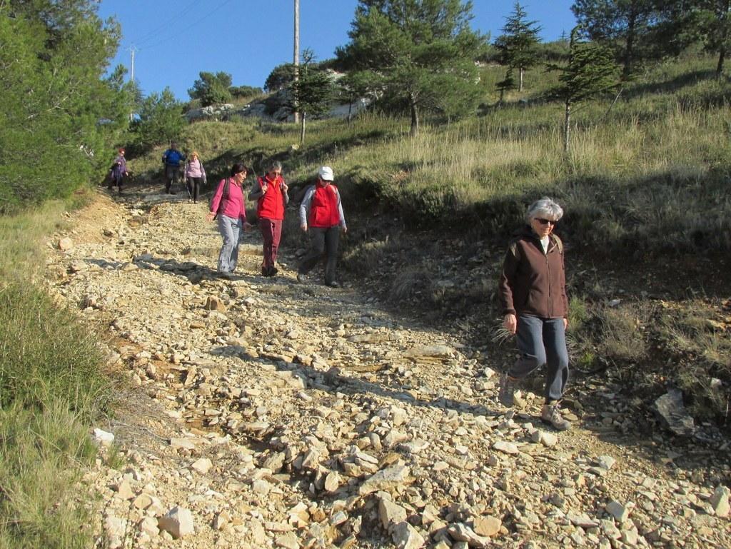 Les collines de Septêmes - La Vigie - jeudi 6 mars 2014 GcEDA5