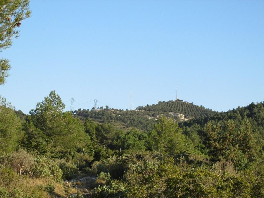 Les collines de Septêmes - La Vigie - jeudi 6 mars 2014 MpUYRk
