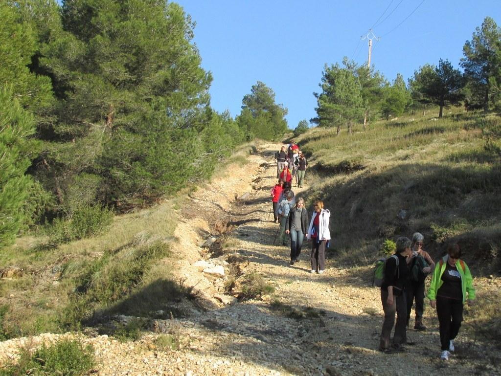 Les collines de Septêmes - La Vigie - jeudi 6 mars 2014 KW3f7J