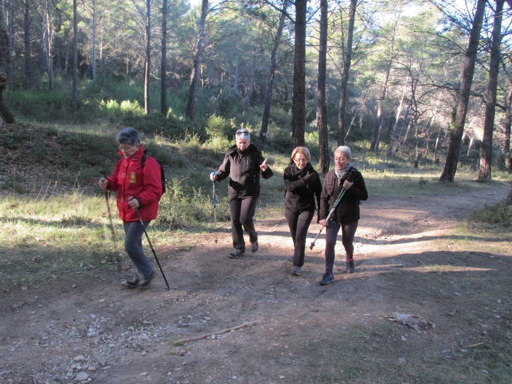 Eguilles - Les Bories - Jeudi 8 janvier 2015 RrnXpl