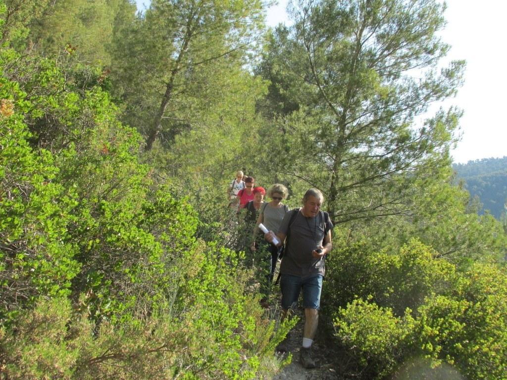 Auriol - les Encanaux - Jeudi matin 4 juin 2015 WsaSFk
