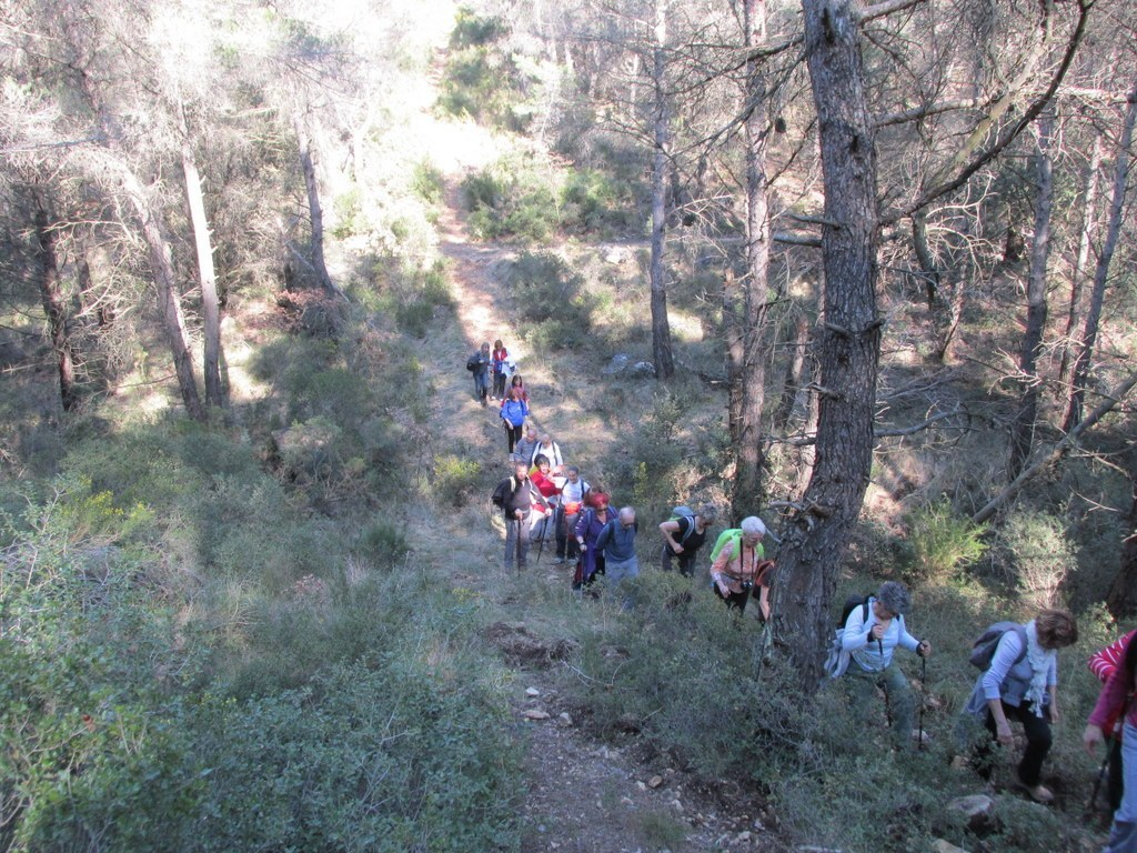 Les collines de Septêmes - La Vigie - jeudi 6 mars 2014 NeUoDu