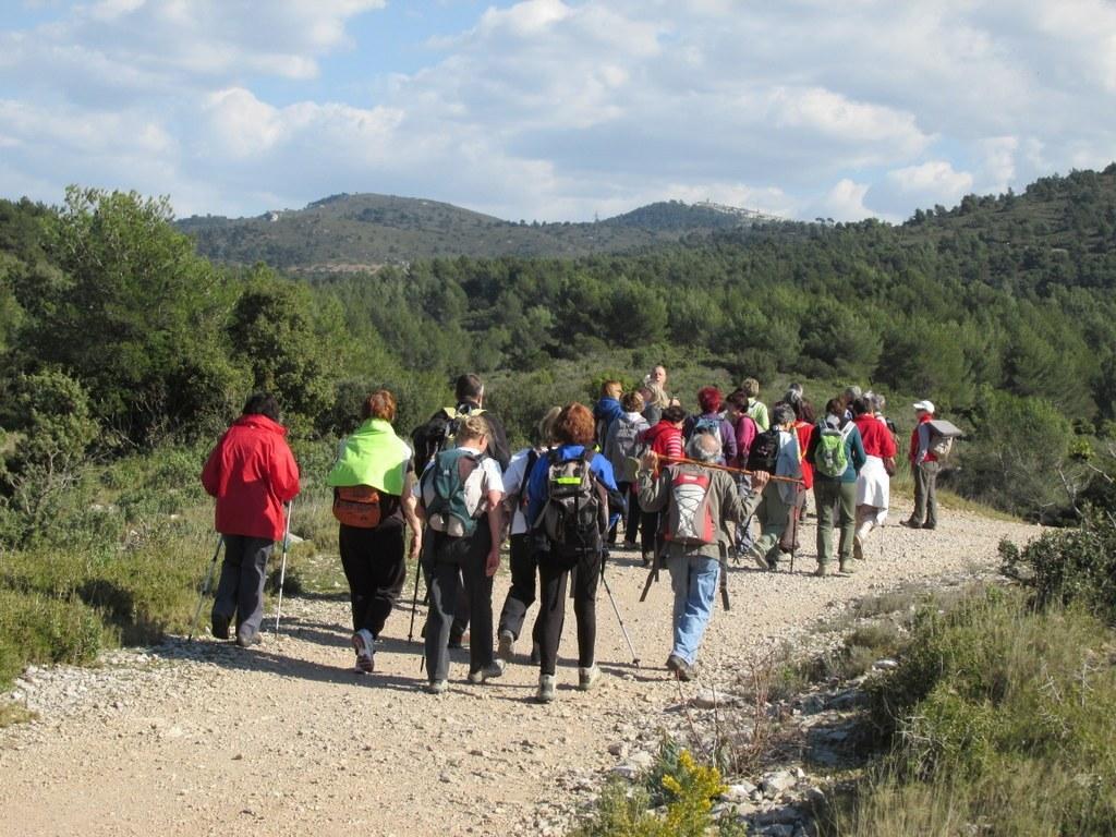 Les collines de Septêmes - La Vigie - jeudi 6 mars 2014 R5rjCO