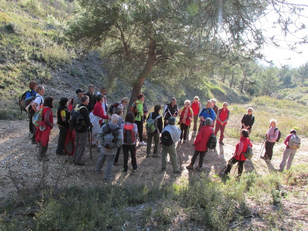 Les collines de Septêmes - La Vigie - jeudi 6 mars 2014 7O0zD6