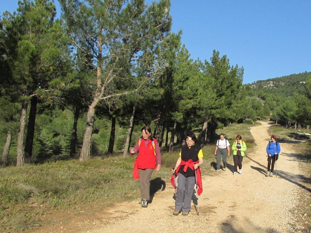 Les collines de Septêmes - La Vigie - jeudi 6 mars 2014 ToErj8
