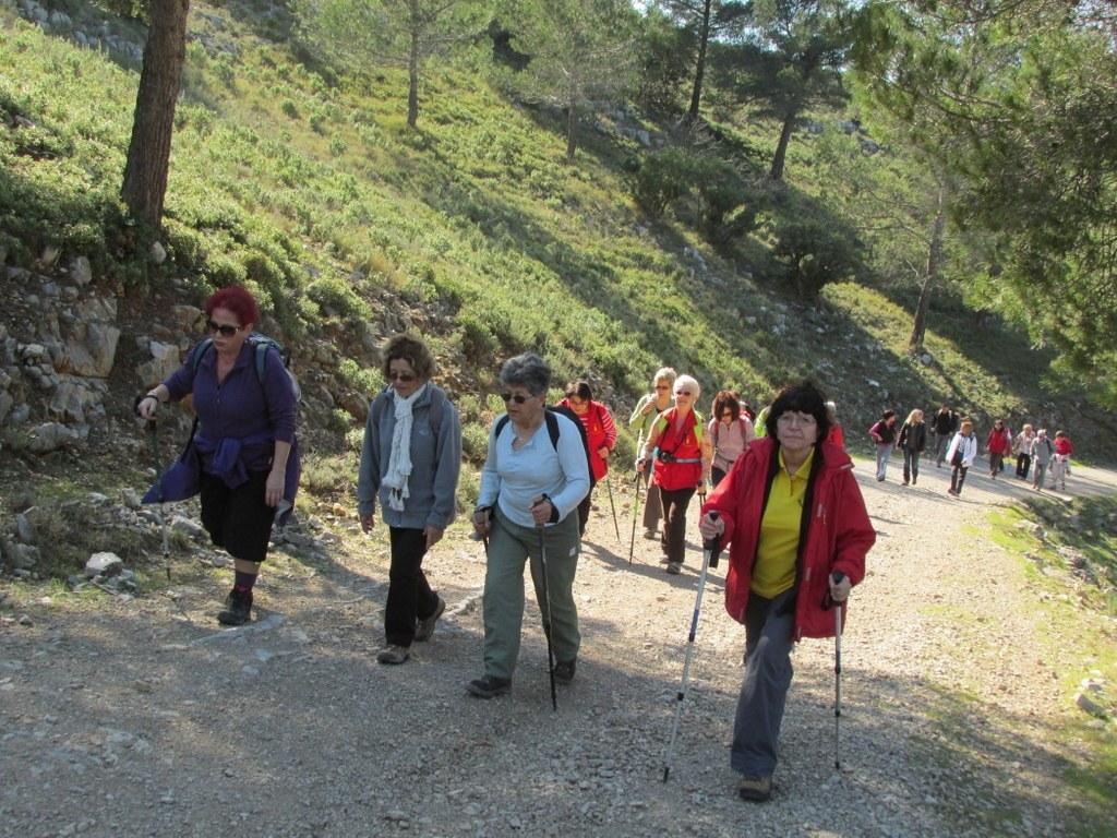 Les collines de Septêmes - La Vigie - jeudi 6 mars 2014 4HtfHu