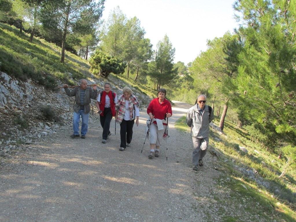 Les collines de Septêmes - La Vigie - jeudi 6 mars 2014 A8IeCv