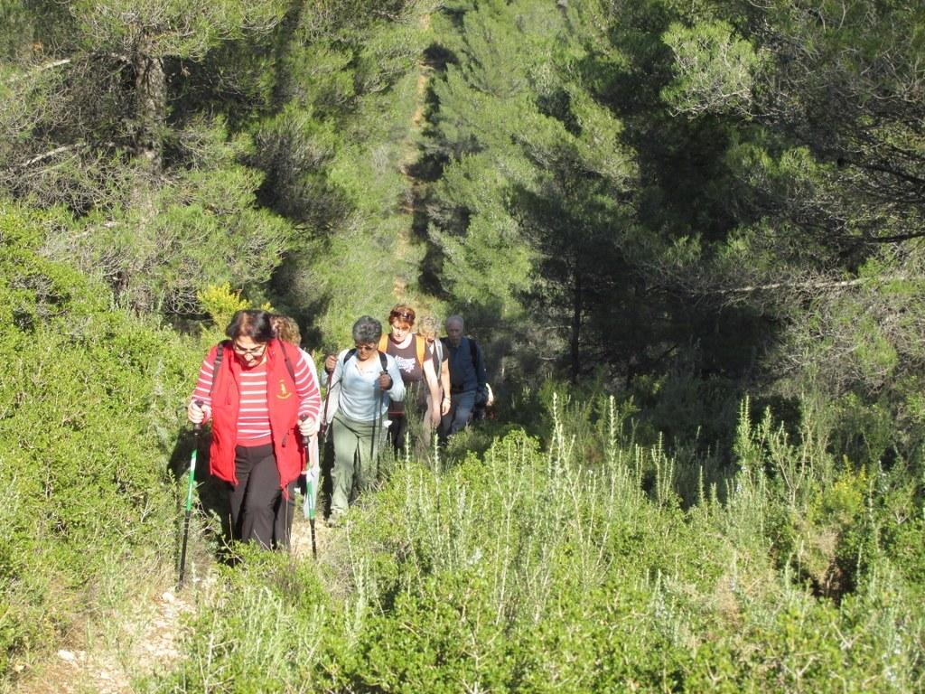Les collines de Septêmes - La Vigie - jeudi 6 mars 2014 Kqkx2X