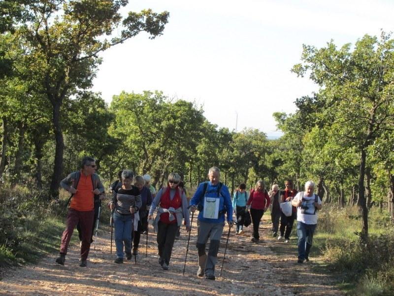 Kirbon - Le Regagnas - Jeudi 23 octobre 2014 QP1MgJ