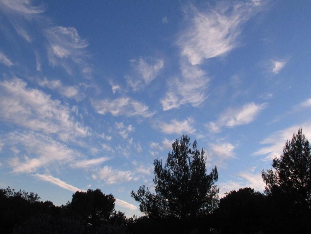 Eguilles - Les Bories - Jeudi 8 janvier 2015 7PbbQR